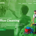 quick cleaning hosted by SeekaHost