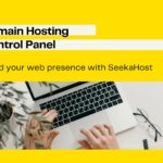 what-is-a-domain-hosting-control-panel-and-how-to-use-it